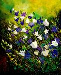 Pol Ledent - bellflowers